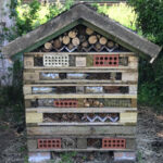 The Big Bug House