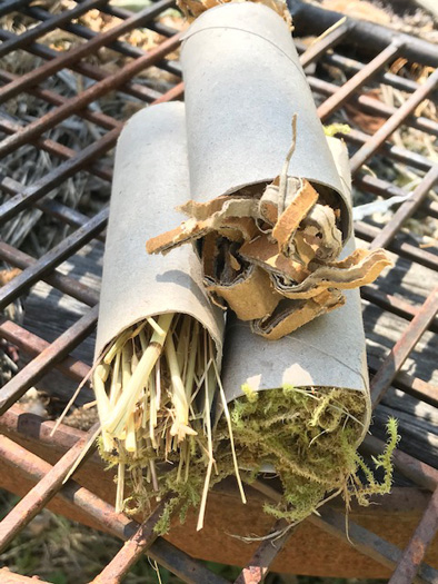 Shredded cardboard, straw and moss all no problem in a toilet roll tube