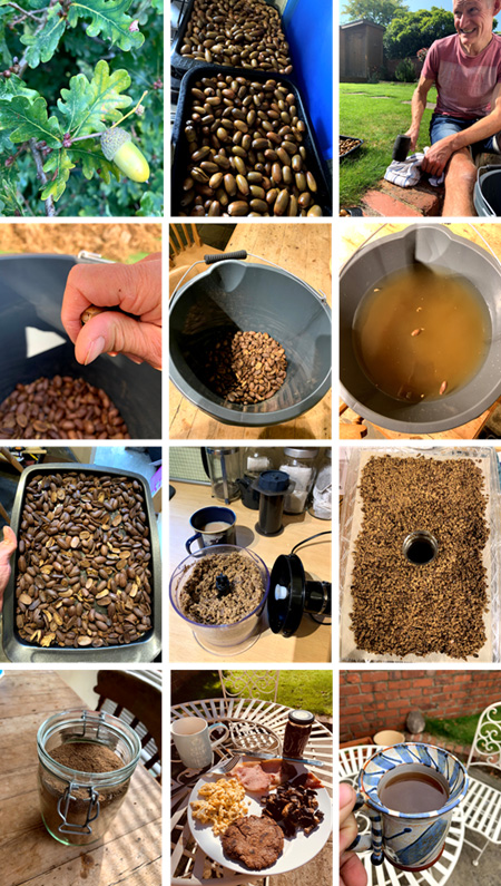 The steps involved in making Acorn Flour