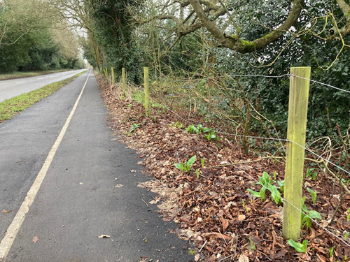 Wire fence replacing hedgerow in disrepair