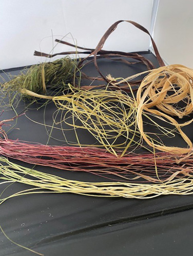 A picture of some of the dried plants
