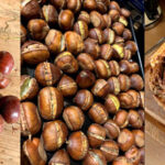 Sweet Chestnut and it's uses