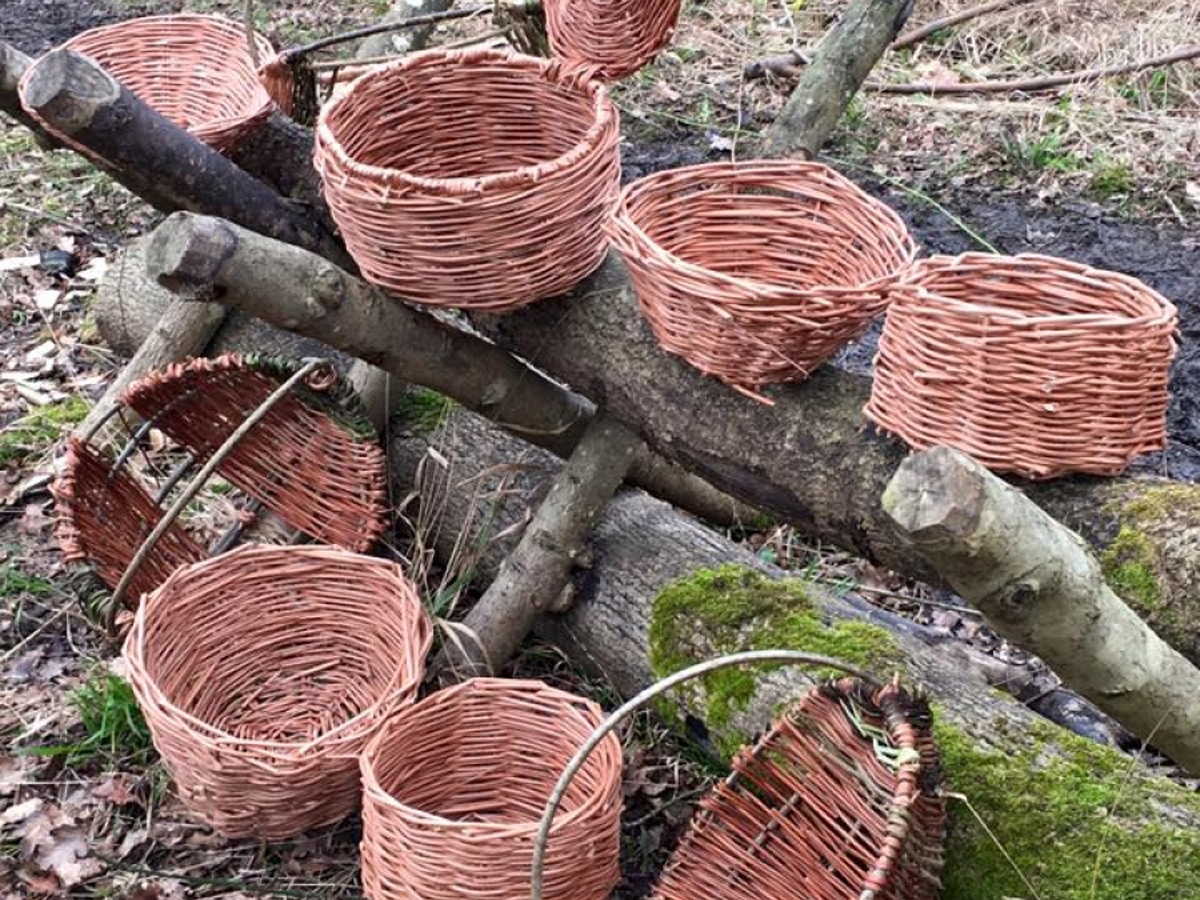 Basketry Day Course - Main Photo