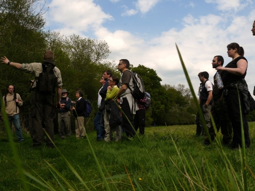 Spring Foraging Course - Main Photo