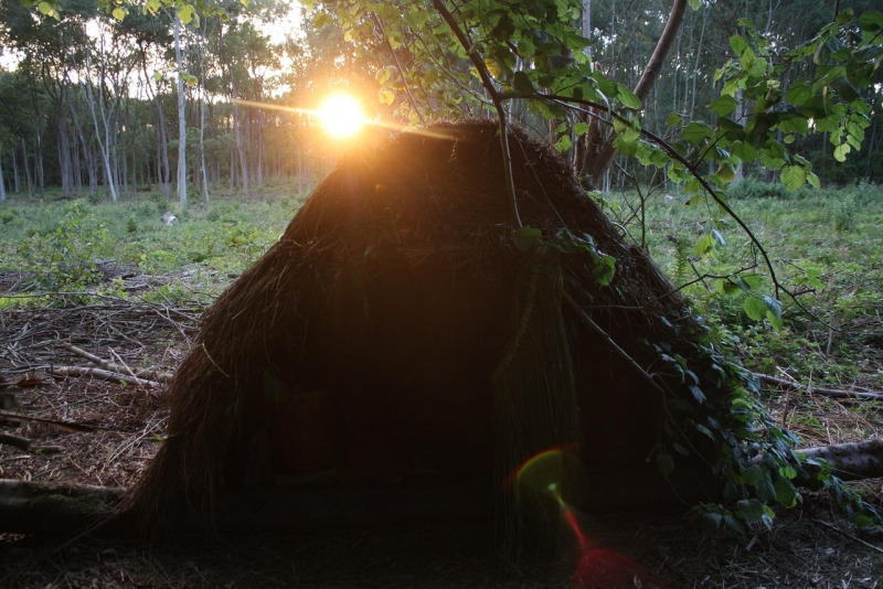 Primitive shelter building weekend