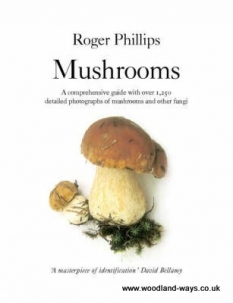 Mushrooms by Roger Philips