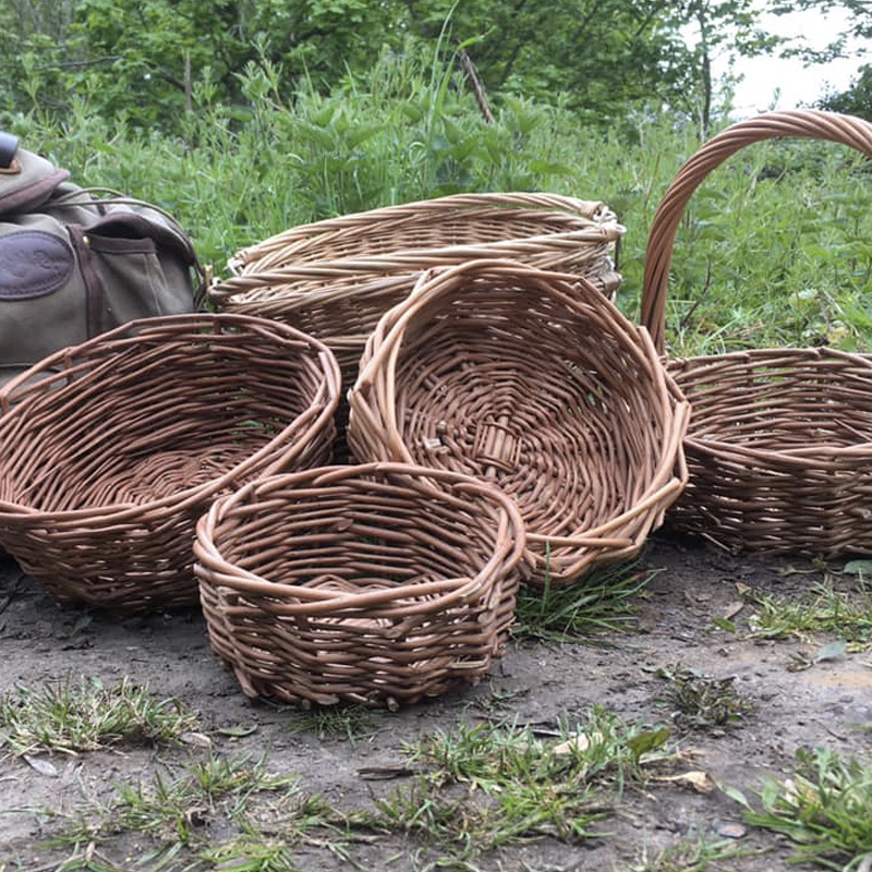 Willow Basketry Workshop