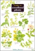 FSC - Guide to Woodland Plants