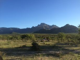 Game Ranger Experience & CyberTracker Training & Assesment - South Africa - Photo 9