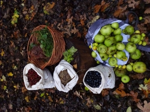 Wild Food Foraging and Preparation Weekend - Photo 1