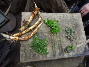 Wild Food Foraging and Preparation Weekend - Photo 4