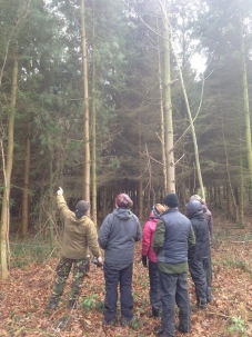 Axe Workshop & Tree Interpretation - Photo 3