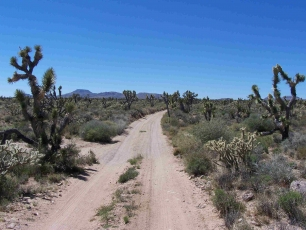 Mojave Road Trek Expedition - Photo 1