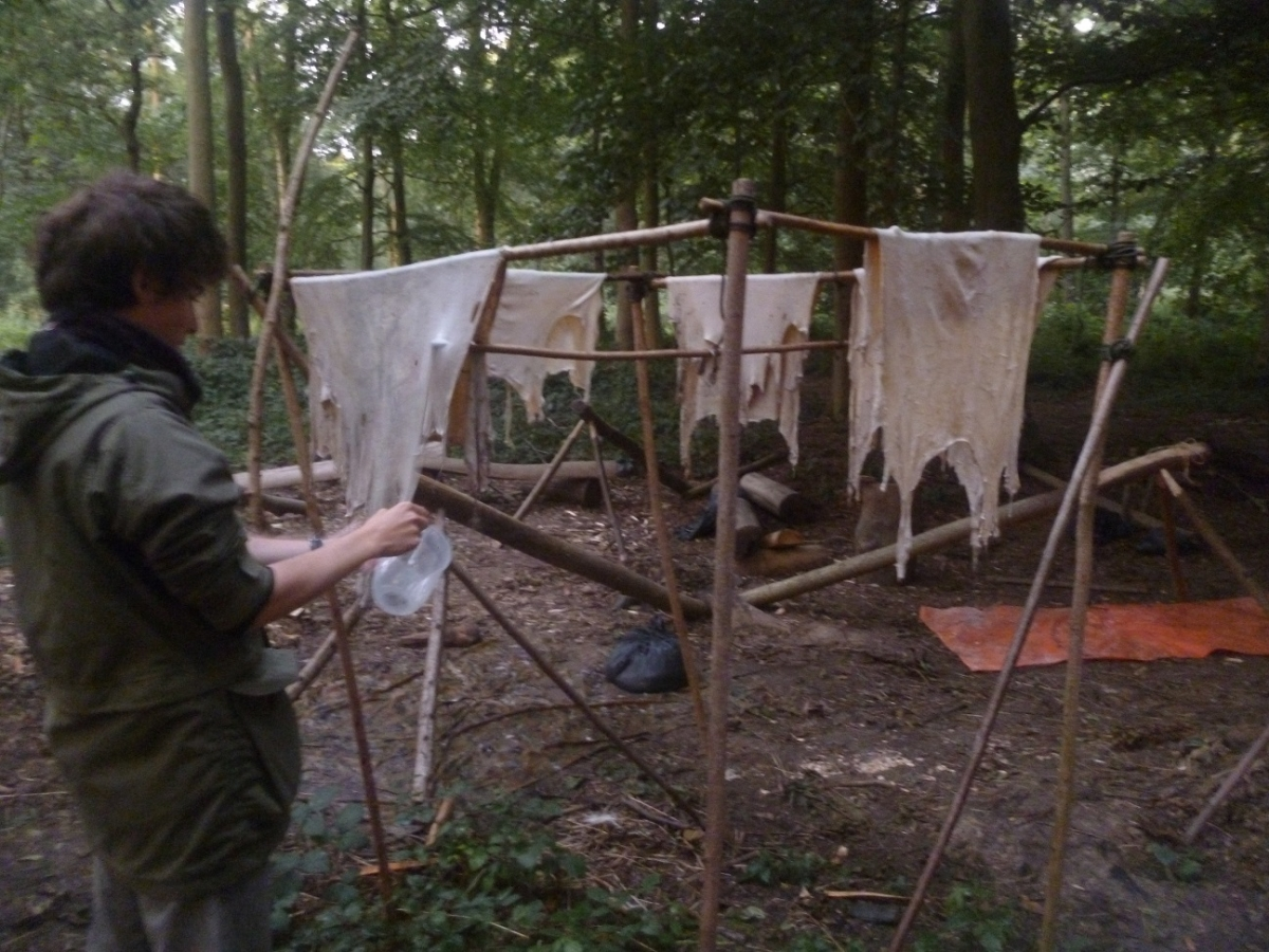 Hide work course - Making buckskin and raw hide - Photo 2