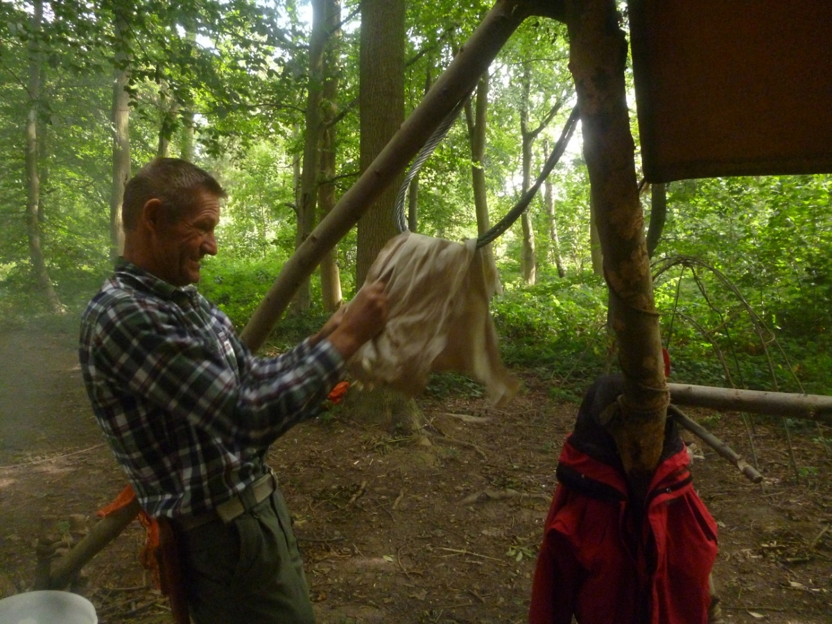 Hide work course - Making buckskin and raw hide - Photo 4